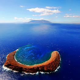 Molokini Snorkeling Cruise