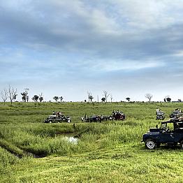 Morning Safari at Udawalawe National Park