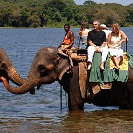 Elephant Ride in Habarana