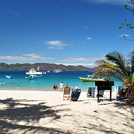 Full-day Catamaran Cruise