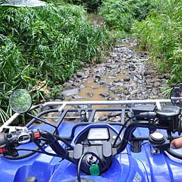 Jungle Quad Tour