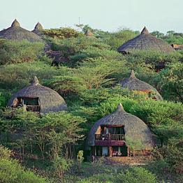 A night's stay at the Serengeti Serena Safari Lodge