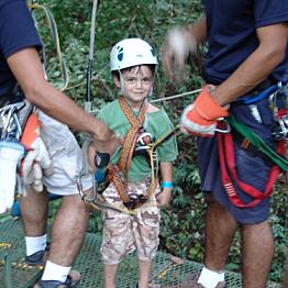 Rainforest Canopy Tour
