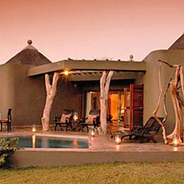 First African Safari Night