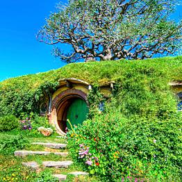 Hobbiton Farm Stay
