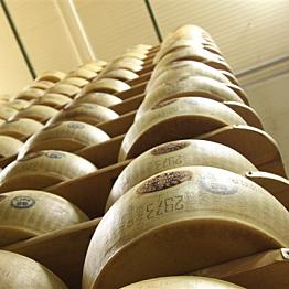 Connoisseurs food tour  of Emilia Romagna