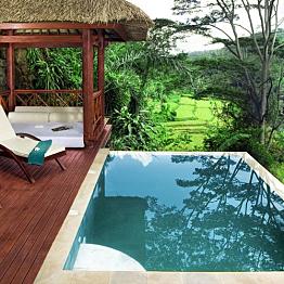 Accommodations: 4 night stay in Ubud
