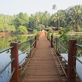 Tropical Spice Plantation Tour with Elephant Ride