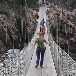 Suspension Bridge Park