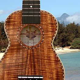 Live Hawaiian Music Night Out