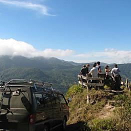 Cafe Monteverde Coffee Tour