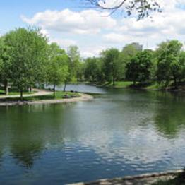 A picnic lunch in Parc du Mont-Royal