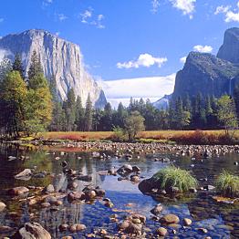 Yosemite Entrance Fee -- Day One