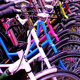 Biking Around Amsterdam
