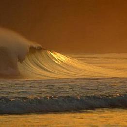 Surf Destination Hotel Stay
