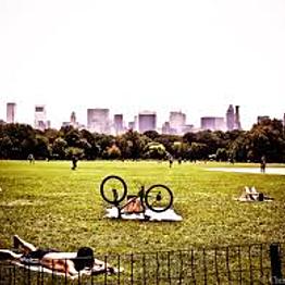 Bike Rentals in Central Park