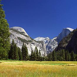 Day 3 - Yosemite