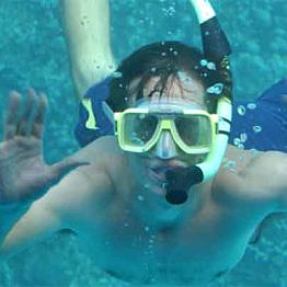 Snorkel Rentals
