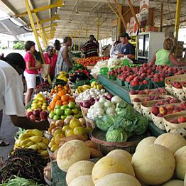 Shopping at local markets