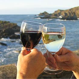 Wine on Waiheke Island tour