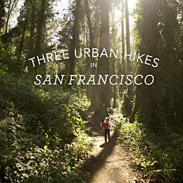 'Urban Hikers' City tour, San Francisco