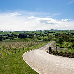 Waipara Wine Trail Tour for Two