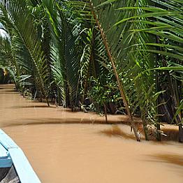 Tour of Mekong Delta