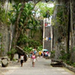 Paradise Island & Sightseeing Tour