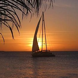 Sunset Sail with the Wayward Sailor