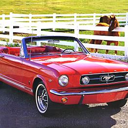 Horse Ride (car)
