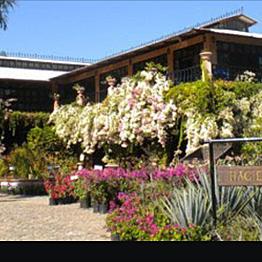 Puerto Vallarta Botanical Botanical Garden