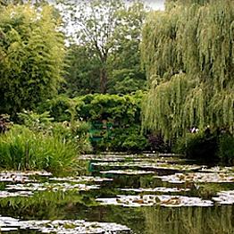 Monet Gardens Bike Tour