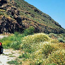 ATV Ride Around Santorini
