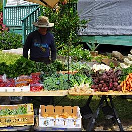 Hanalei Bay Farmer's Market & Fish Market
