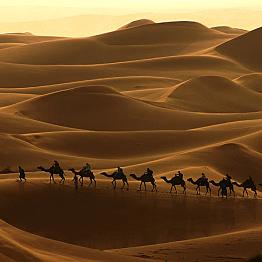 A Four Day Tour to Dades Valley, Todra Gorge, and camel trek through Erg Chebbi