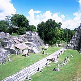 Tikal Mayan Ruins Exploration