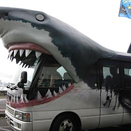Shuttle from Bocas Del Toro to Boquete