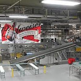 Anhueser-Busch Factory Tour