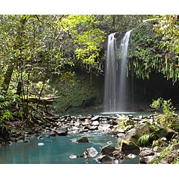 Road to Hana Rainforest Hikes & Waterfall Swim