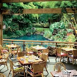 Dinner and booze at Keoki's Paradise