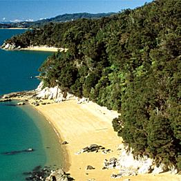 Beach Day in Abel Tasman National Park