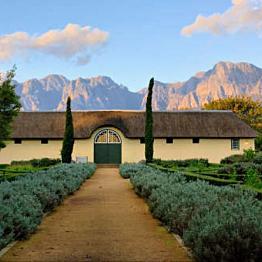 Wine Tour in Cape Town