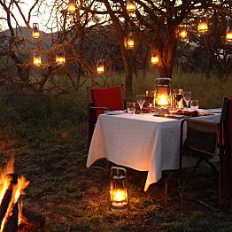Dinner in the Bush - February 8th