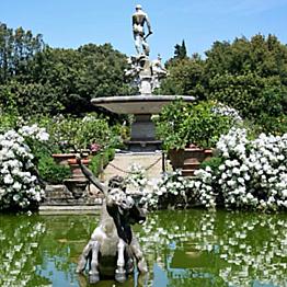 Boboli Gardens & Romantic Brunch