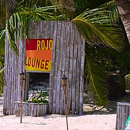 Dinner at Rojo Lounge