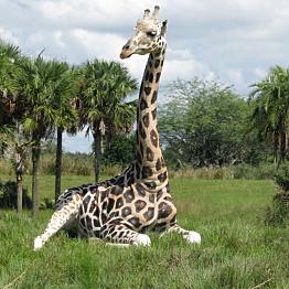 African Safari Trek