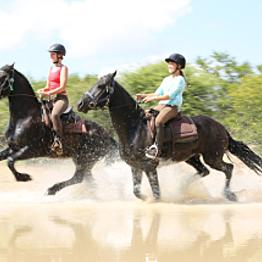 Horseback Riding in Zambia