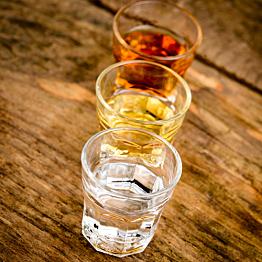 Tasting Rum at a Jamaican Distillery