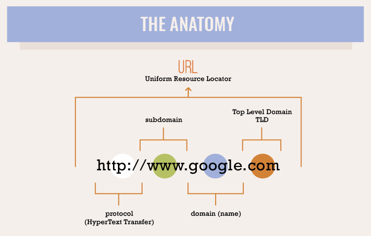 Anatomy of a Domain Name diagram