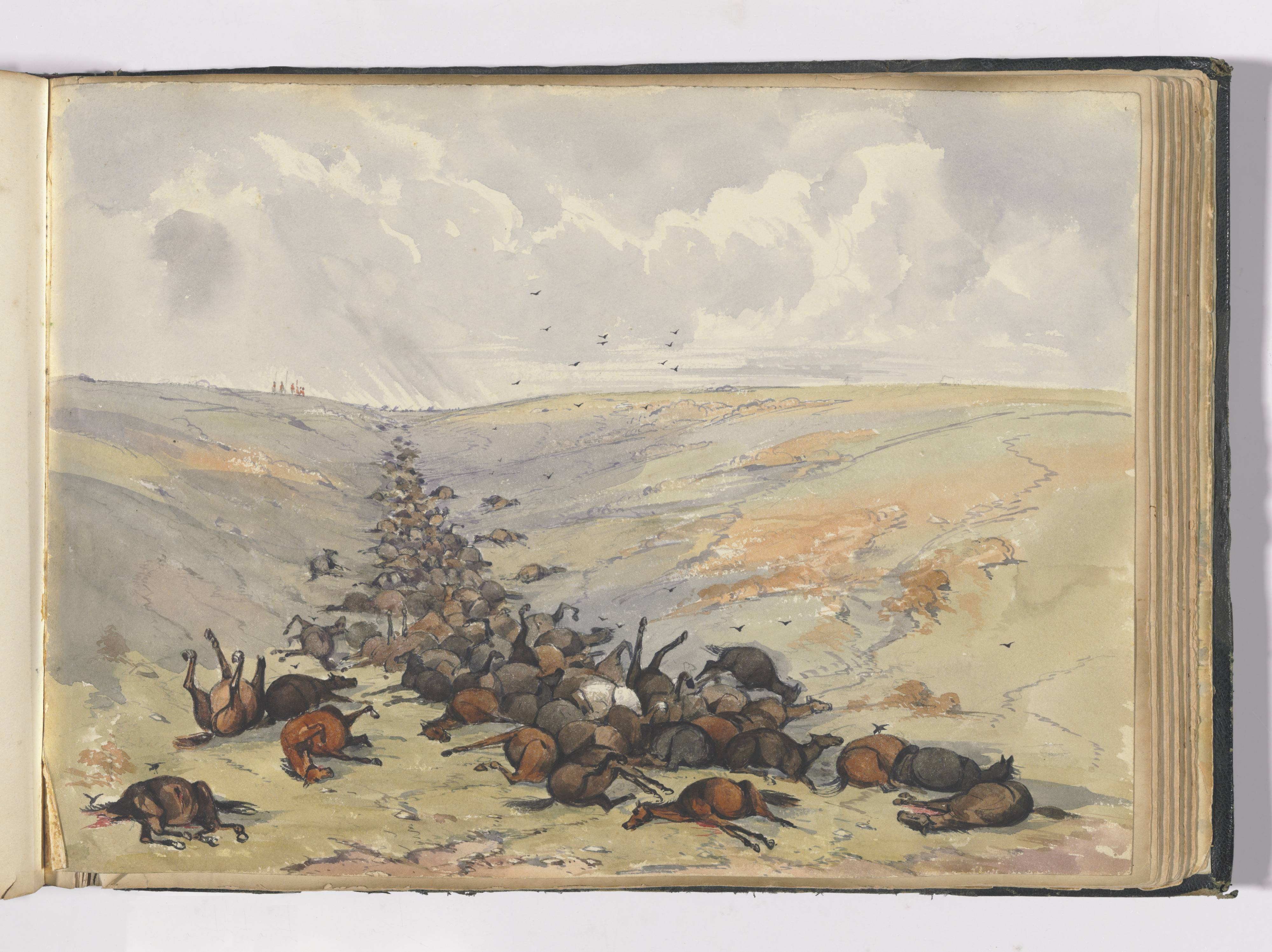 Watercolour painting. A large number of dead horses are depicted in a shallow ditch or trench.